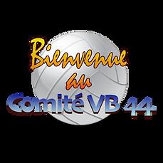 BenvCD44VB.png
