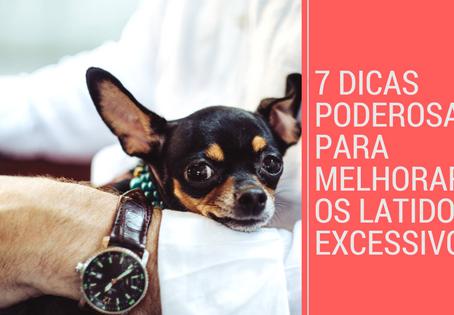 Cachorros que latem muito: 7 Dicas poderosas para melhorar esse comportamento.