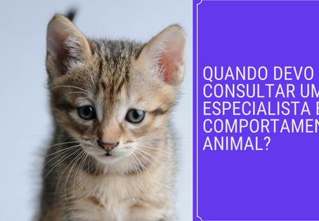 Quando devo consultar um especialista em comportamento animal?