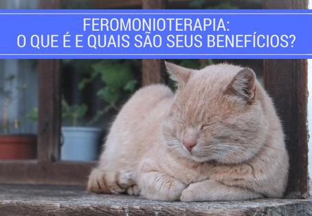 Feromonioterapia: O que é e quais são seus benefícios?