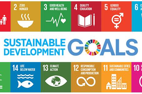 Die UNO-Nachhaltigkeitsziele in Liechtenstein umsetzen - Was leistet die Zivilgesellschaft?