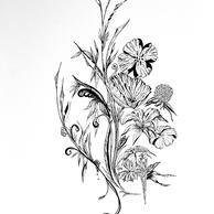Botanique 2