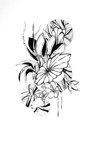 Botanique%203%20a3_edited.jpg
