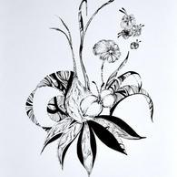 Botanique 6