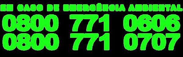 0800-verde - 0707.png