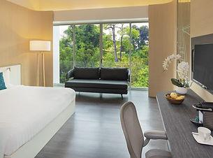 Hillview-Room-925x479.jpg