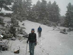 Surprise Snowfall in the Phobjikha Valley