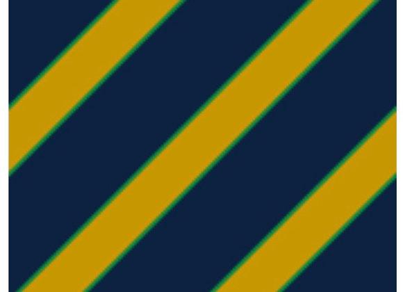 Notre Dame colors diagonal stripe- adult