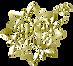 Regia Prado logo