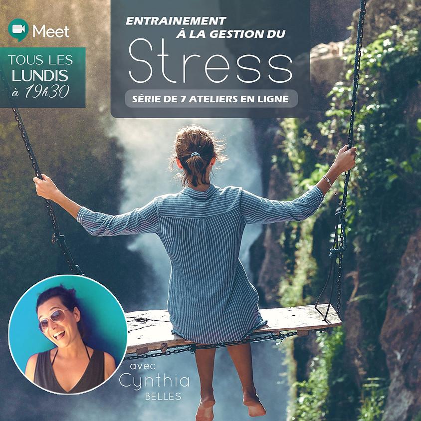 Entraînement à la Gestion du Stress