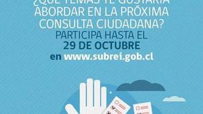 Consulta Ciudadana - Subsecretaría de Relaciones Económicas Internacionales
