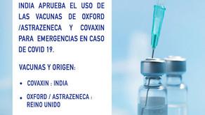 Noticias India: se aprobó el uso de las vacunas de Oxford y Covaxin para emergencias por Covid 19