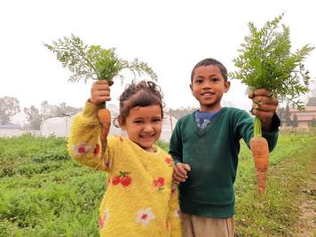 Organic farming support nepal.jpg