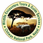 Widlife Encounters Tours nd Guies Nepal