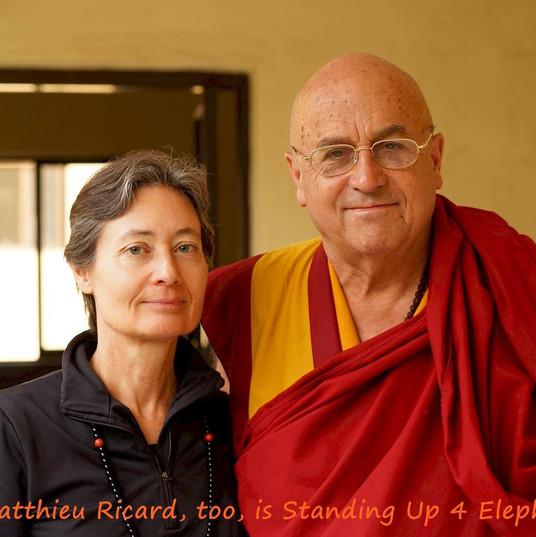 Matthieu Ricard Nepal.jpg