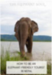 elephant soul.JPG