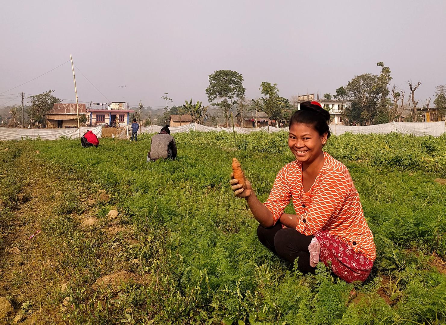 Organic farming support nepal