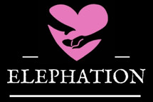 Elephation