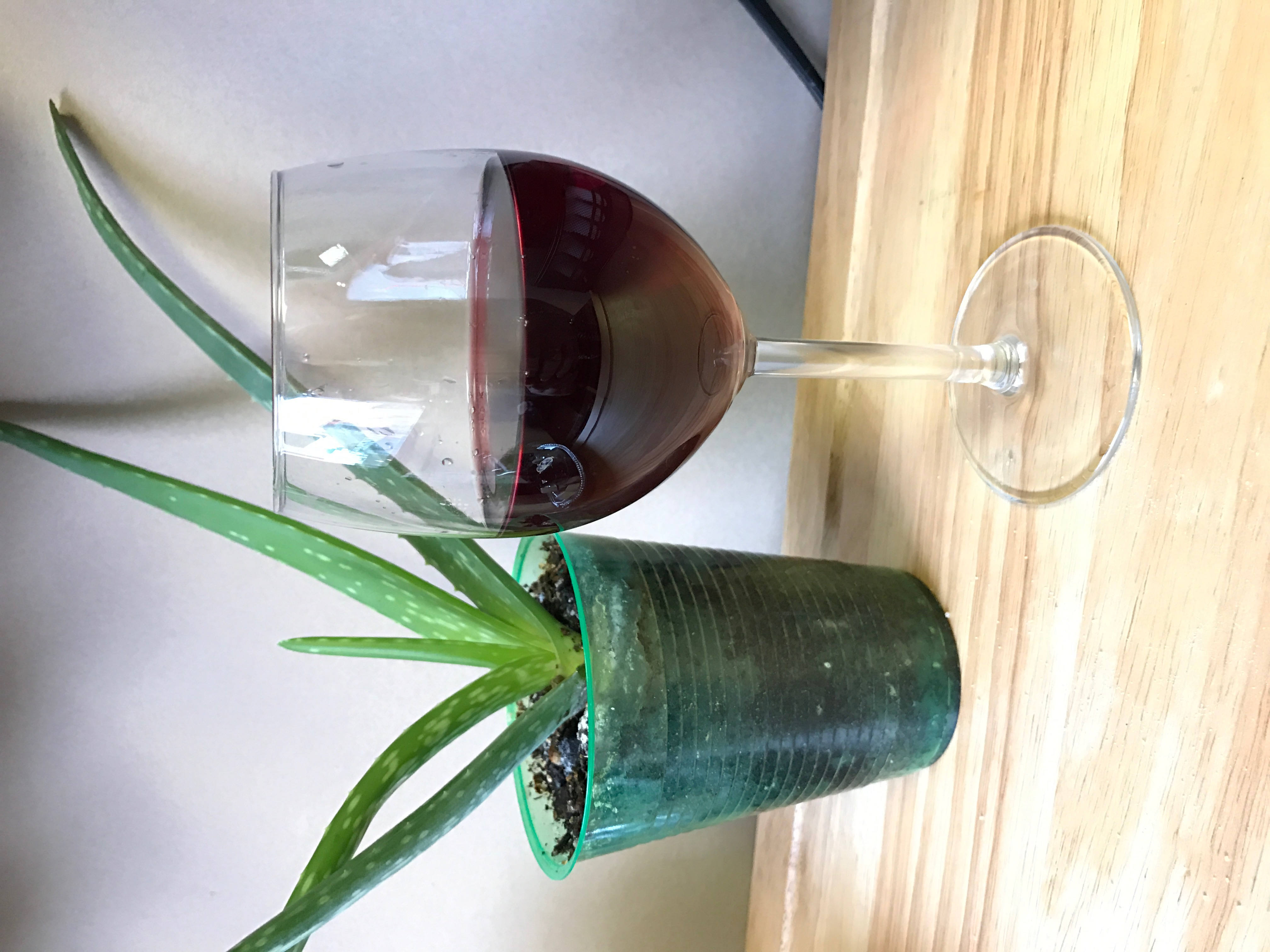 IOY Wine