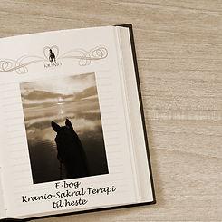 Kranio-Sakral Terapi ebog.jpg