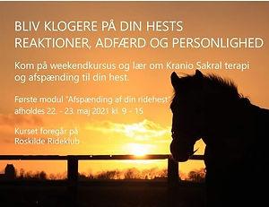 Weekendkursus_Roskilde_2021_b.jpeg