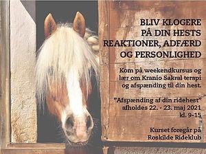 Weekendkursus_Roskilde_2021.jpeg