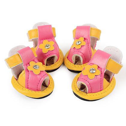 Zapatos para perros