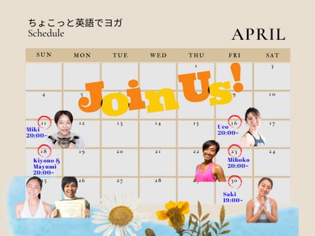 4月からの英語ヨガLIVEスケジュール