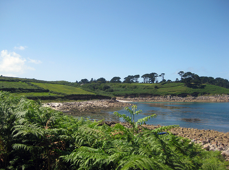 Watermill Cove, St Mary's