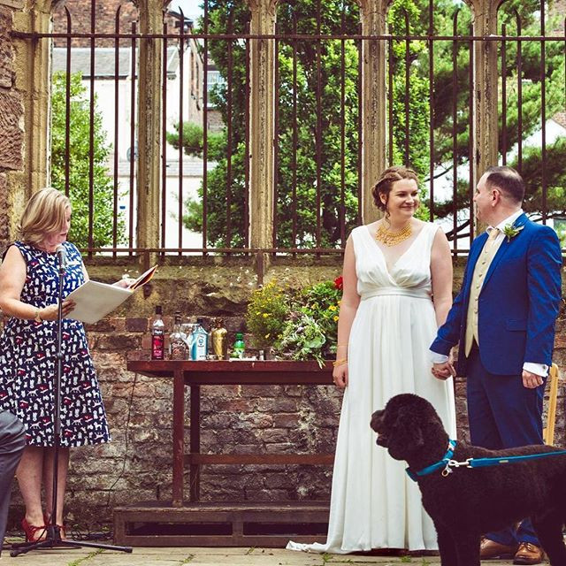 outside wedding in bombed out church with cocktail ceremony and a best dog