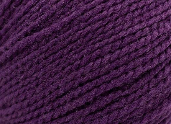 Semilla GOTS Purple 15