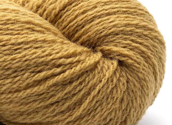BC Garn - Bio Shetland - 47 Warm Mustard