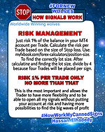 Forex Risk Management Only ris 1% per trade