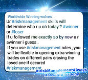 Forex Risk Management - Your risk management in your trades skills will determine who are you, winner or loser