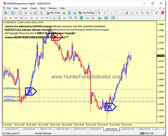 forex hunter indicator signals.png