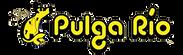 la_pulga_rio_logo.png