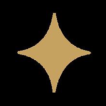 estrella-21.png