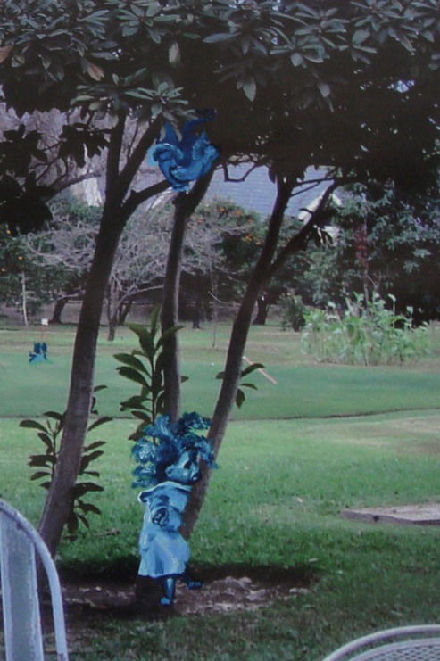 Juego con los mios 2007 fotografia intervenida.