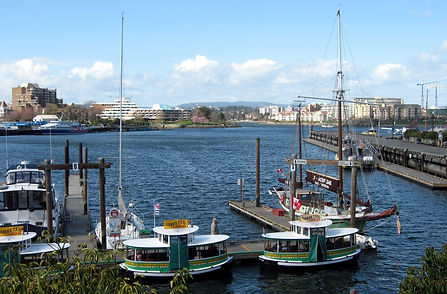7-3-20 02 harbour.jpg