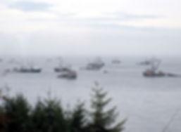 na10-2-28 1 herring fisheries.jpg
