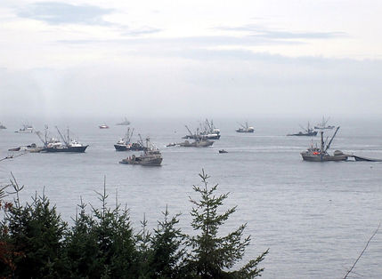na10-2-28 1 herring fisheries.jpg