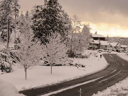naI snow.JPG