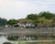 8-5-26 shacks.jpg