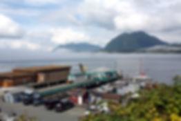 12-8-20 Tofino harbour.jpg