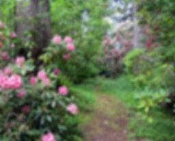 8-5-25 8 path.jpg