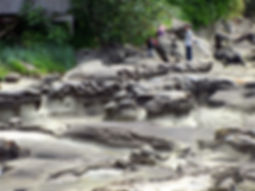 13-06-15 8 closeup of rock.jpg