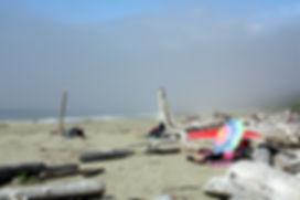 12-8-20 wickinninish beach.jpg