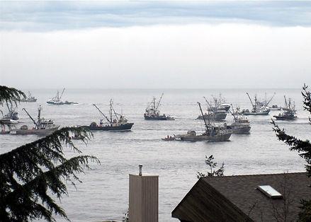 na10-2-28 2 herring fishery.jpg