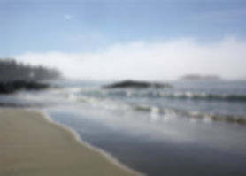 12-8-20 beach sunlight.jpg