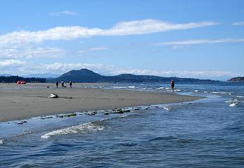 8-7-21 beach 2.jpg